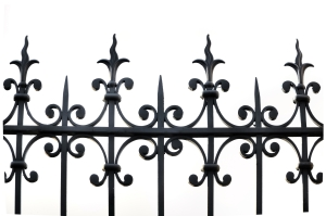 Main cover image of wrought iron fence for The Vampire